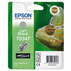 Ink Cartridge EPSON C13T03474010